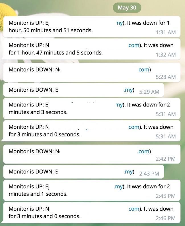 contoh notifikasi daripada uptimerobot